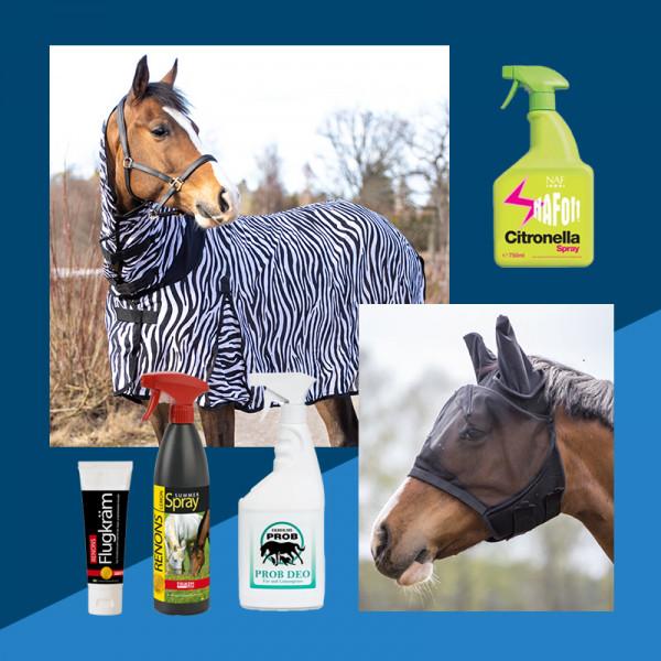 Hjälp din häst att hantera flugor och knott
