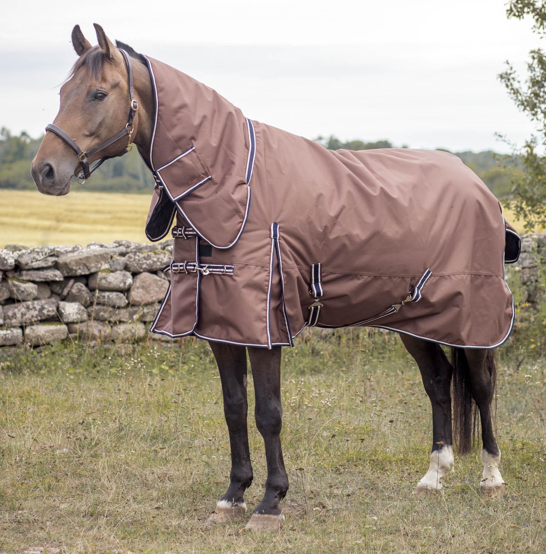 bästa vintertäcket häst
