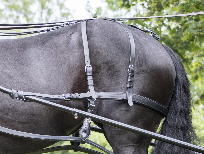 baksele till häst