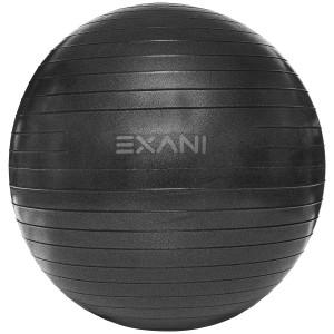 GYMBALL 75CM EXANI