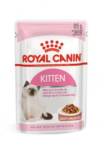 Kitten Gravy Rc 85G