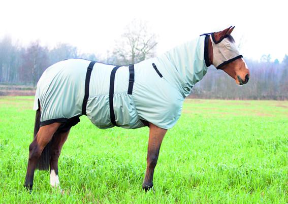 eksemtäcke ponny