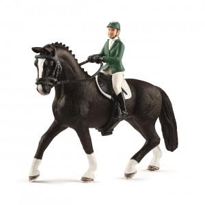 SHOWJUMPER W. HORSE