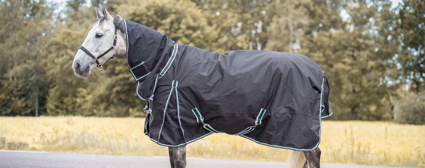 Klippa hästen i höst? Enkla tips på vägen