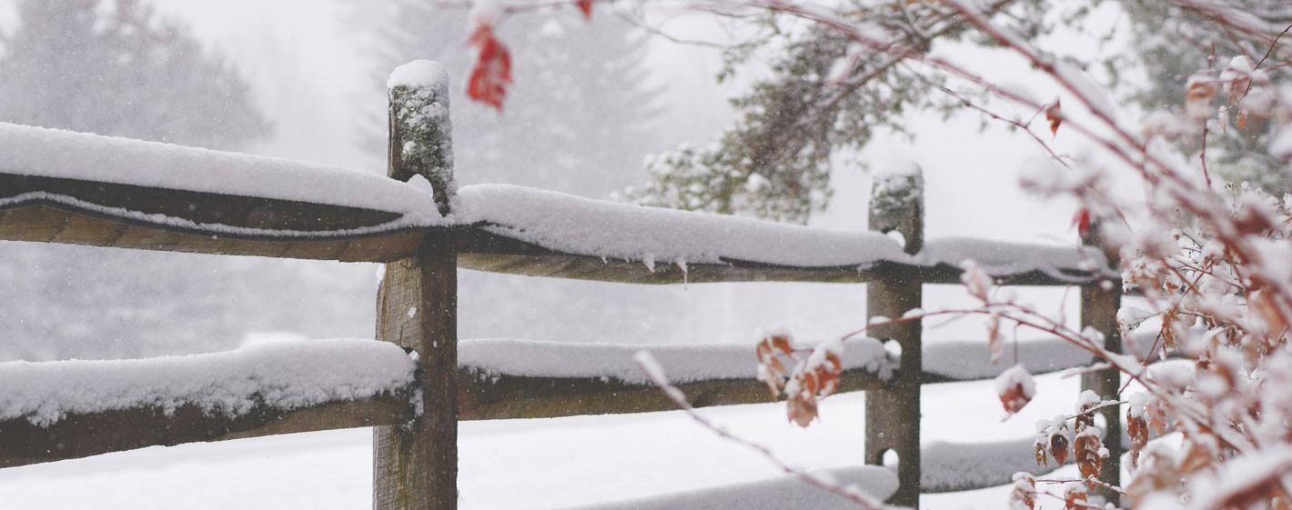 Ordna frostfritt vatten i hagen