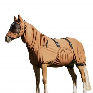 Eksemtäcke Häst Lippo